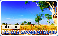 Tachai and Savannah Island